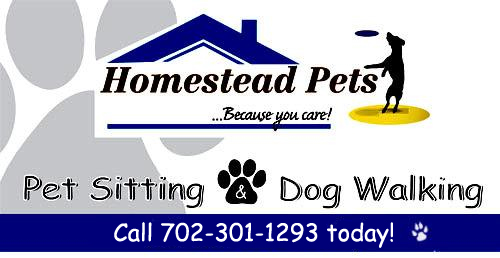 Professional Pet Sitting Services in Las Vegas for Homestead Pets, Las Vegas Pet Sitter, Dog Walker
